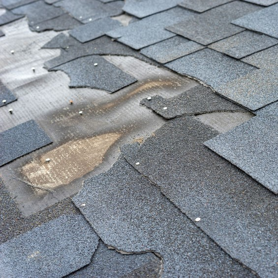 shingles on roof with damage