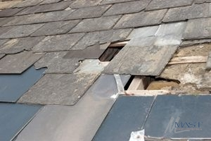 Shingle Roof In Need of Roof Repair